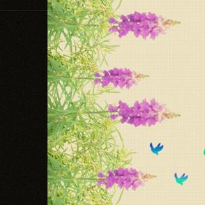 Lavender_Rainbow_3-1