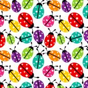 Spot the Ladybugs