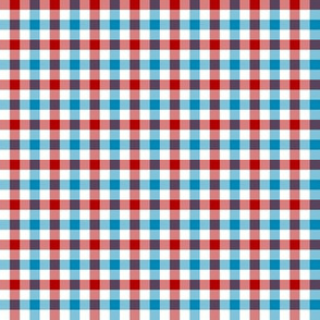 Echo Canyon Gingham 2 in Red Chile and Turquoise Blue and Cloud