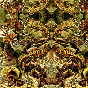 Haeckel Reptiles