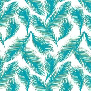 Feather Aqua-ch