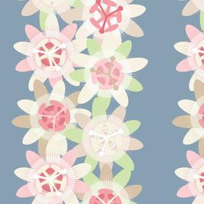 Pale Passionflower Stripe