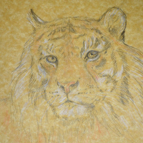 Tiger, Light (sized for Linen)