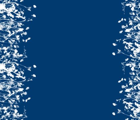 cyanotype poppy border