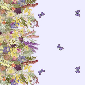Lavender Garden Border