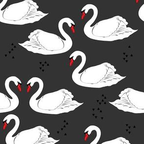 SwanFabricGray