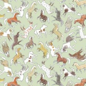 Wild Horses, Tinted on Sage Green