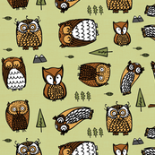 owls on green