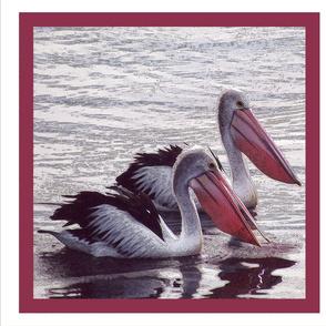 pelicans_Cushion_40cm_x_40cm