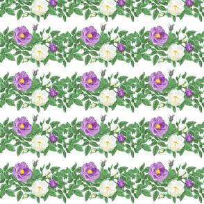 6x4_leaves_purple_white_centered_more_leaves_white