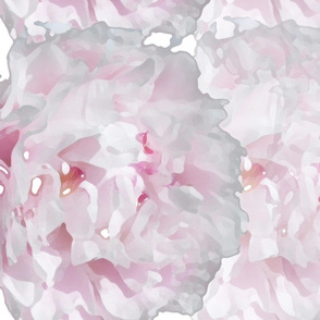 Peonies_For_Mom