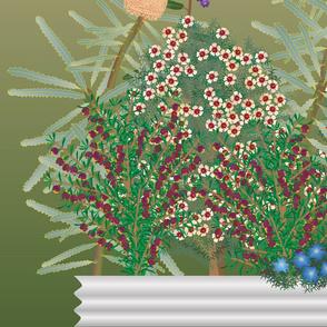 austnativefloravertical