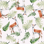 Roe deers