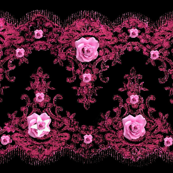 Pink Lace and Roses on Black