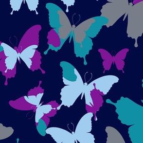 butterfly-5552