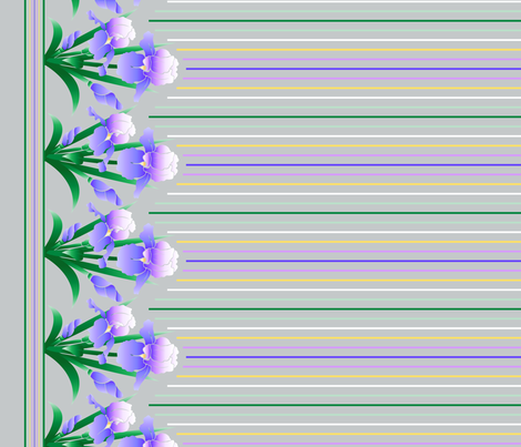 Blue Iris Border