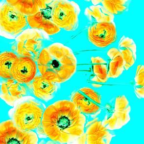 Fiaba Blossom
