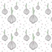 Curvy lines_Garlic