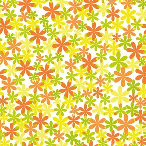 flower citrus
