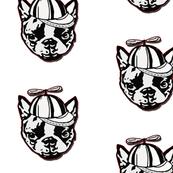 Boston Terrier Buddha twirly cap