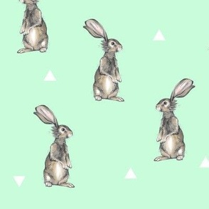 Rabbits + Triangles on Mint