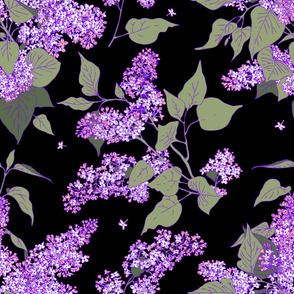 Lilac, pattern, violet, color, flowers, garden