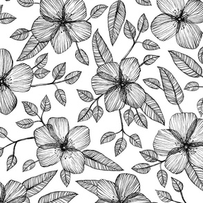 Black & White Floral Line Drawing Pattern