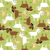 sound of music yodeling goats
