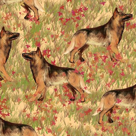 German Shepherd dogs in Autumn Leaves