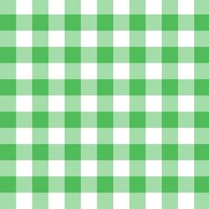 Spearmint green 5/8-inch gingham