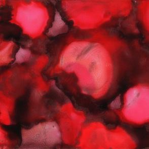 Petals, Rose