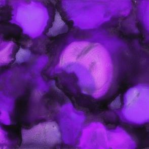 Petals, Lilac
