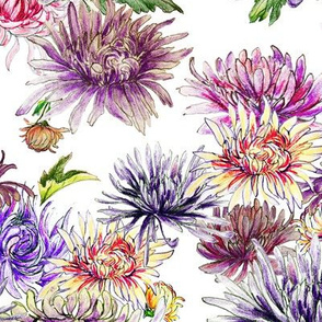 Chrysanthemum Scatter