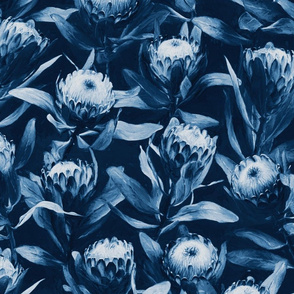 Evening Proteas in Indigo Denim Blue