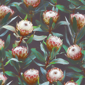 Evening Proteas - Green, red and soft grey