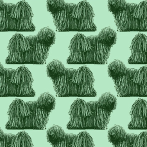 Standing Puli - green