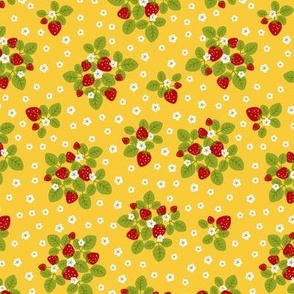 strawberry patch yellow