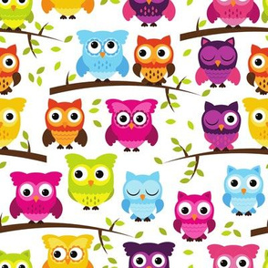 Rainbow Owls and Branches