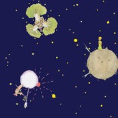 the universe of the little prince