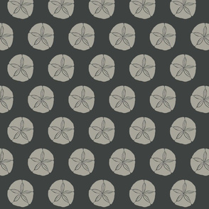 Sand Dollar MED grey on dark slate-2015-ch