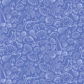 shells et al