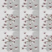 Grey Starburst Flowers