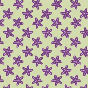 Starfish reef