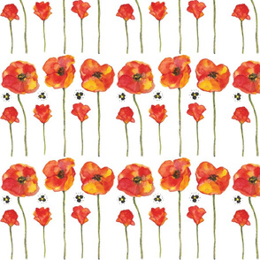 Red Watercolor Poppies Pattern