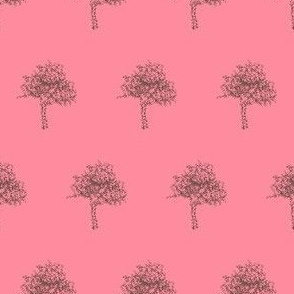 Redbud in Bark on Blossom