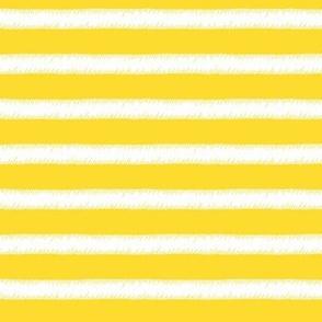 White on Yellow Stripe