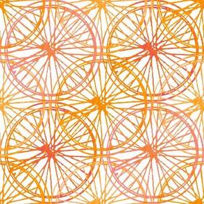 PL17_Citrus_Wheels