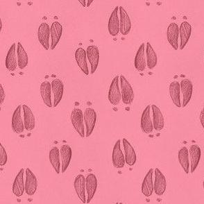 Deer Tracks Soft Pink