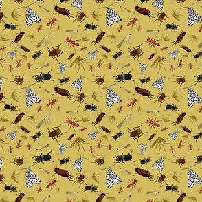 bugs yellow