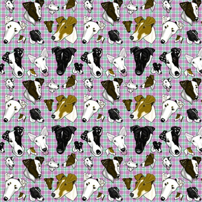 Smooth Fox Terrier Large Pastel Plaid